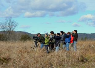 dead-creek-birding-group