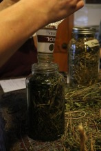It is so easy to make tea and tincture from what we have in the nature, leaves and vodka.